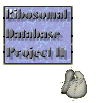 ribosomal database project The ribosomal database project (rdp) is a curated database that offers ribosome data along with related programs and services the offerings include phylogenetically ordered alignments of ribosomal rna (rrna) sequences, derived phylogenetic trees, rrna secondary structure diagrams and various software packages for handling, analyzing and.